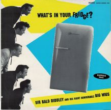 Sir Bald Diddley and his right honourable Big Wigs - what's In Your Fridge - 1994 EX+/EX+